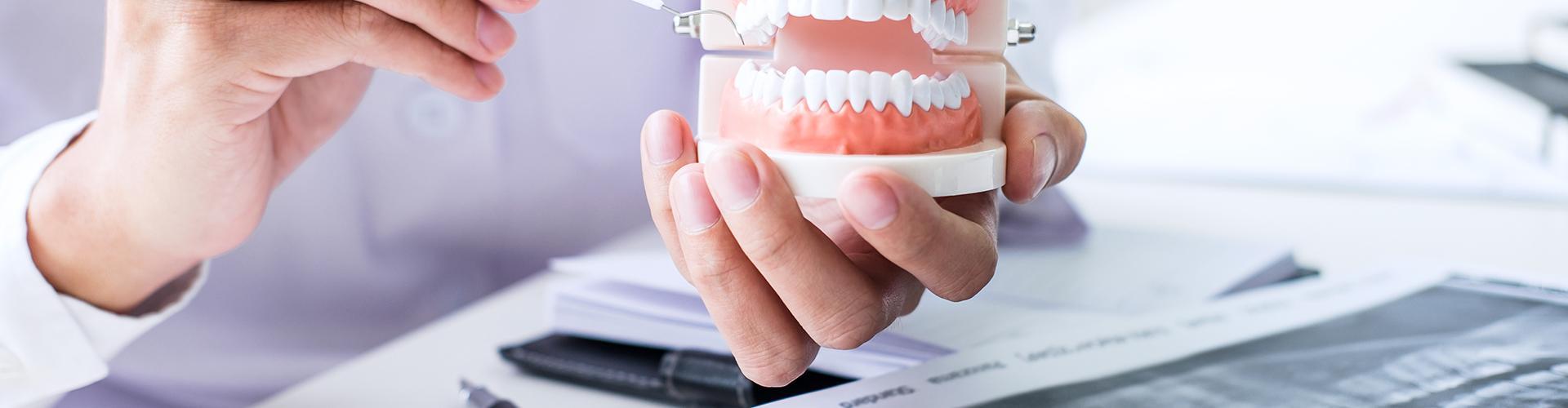 Dr. Nasr Abdulqawi